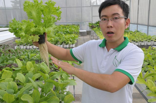 Nông dân rau sạch - sự lựa chọn của KTS Lân - Ảnh 1.