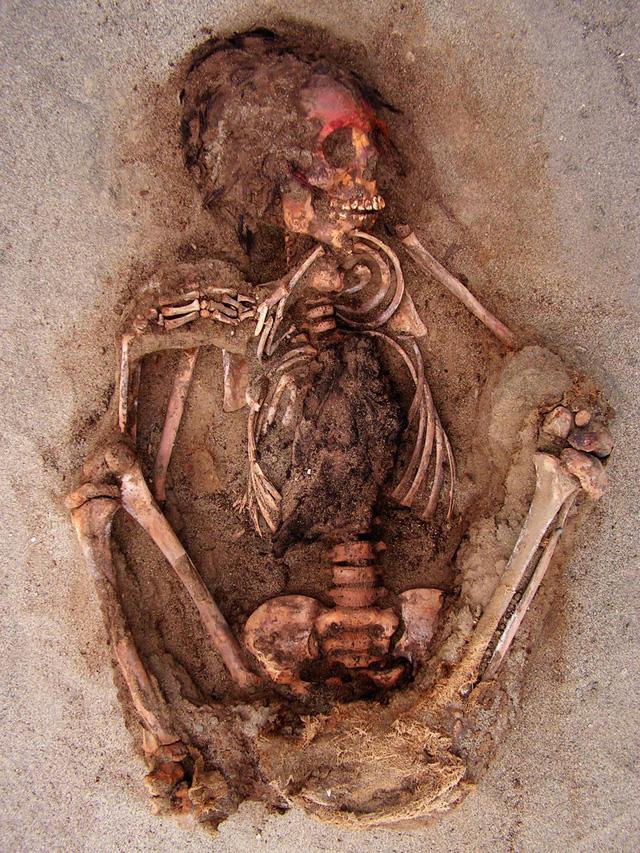 Kỳ bí ngôi mộ chôn nhiều hài cốt trẻ em cùng lạc đà ở Peru - Ảnh 2.