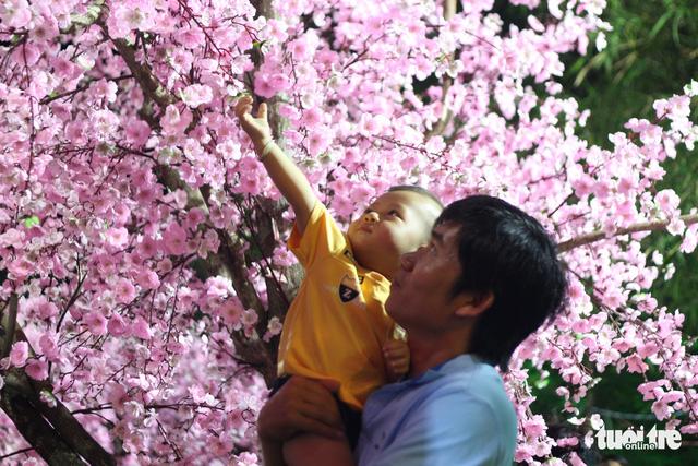 Bạn trẻ Huế thích mê 'check in' vườn hoa anh đào - Ảnh 2.