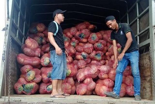 Giải cứu bí đỏ Đắk Lắk với giá 4.900 đồng/kg - Ảnh 1.