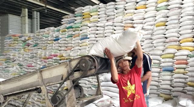 Nông dân phấn khởi vì lúa trúng mùa được giá, lời 45% - Ảnh 1.