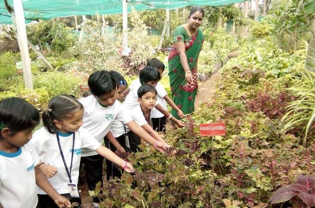 Những bài tập hè thú vị cho phụ huynh Ấn Độ dạy con - Ảnh 1.