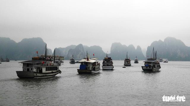 Quảng Ninh không chấp nhận tàu kém chất lượng vào Vịnh Hạ Long - Ảnh 1.
