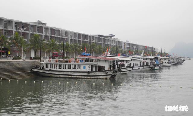 Quảng Ninh không chấp nhận tàu kém chất lượng vào Vịnh Hạ Long - Ảnh 2.