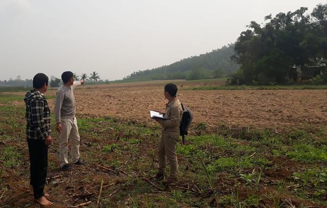 1.350ha đất bỏ hoang vì dự án bò sữa 3.800 tỉ đồng dang dở - Ảnh 1.