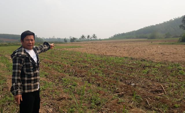 1.350ha đất bỏ hoang vì dự án bò sữa 3.800 tỉ đồng dang dở - Ảnh 2.