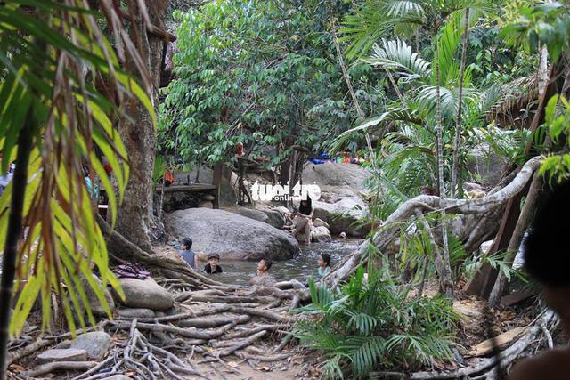 Khu bảo tồn Hòn Bà xin cho thuê 600ha để kinh doanh du lịch sinh thái - Ảnh 1.