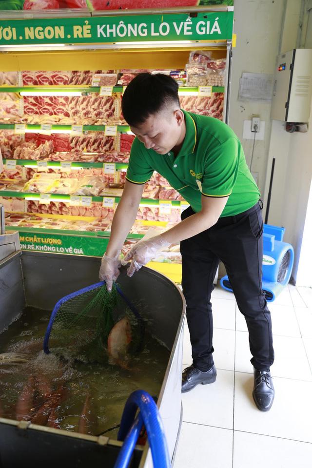 Bách hóa Xanh mở thêm 'chợ thịt cá', tuyển dụng số lượng lớn - Ảnh 3.