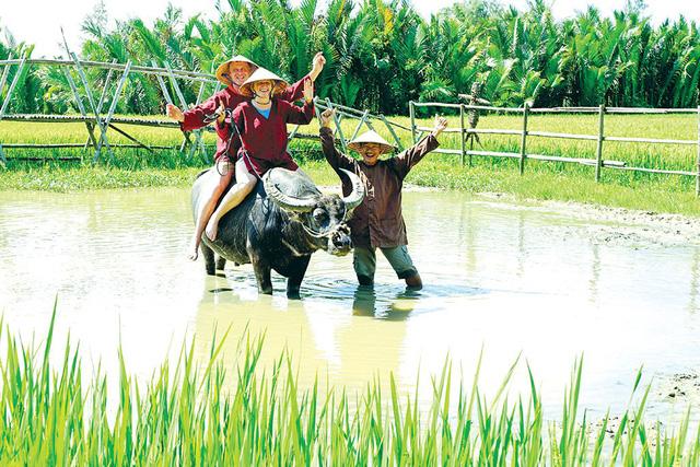 Вьетнам предлагает новый тур: стать вьетнамским фермером!