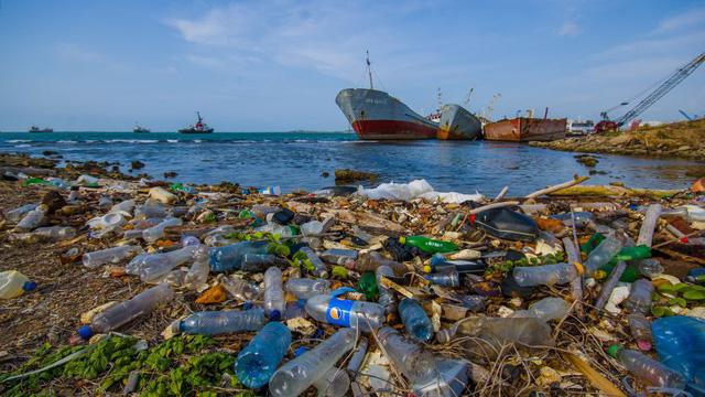 Ấn Độ cấm sử dụng đồ nhựa dùng một lần - Ảnh 1.
