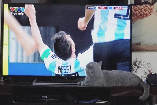 Lập siêu phẩm, Messi bây giờ mới bắt đầu World Cup của mình - Ảnh 6.