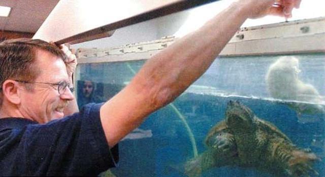 Thầy giáo đối mặt án tù vì cho rùa ăn sống chó con trước lớp - Ảnh 1.