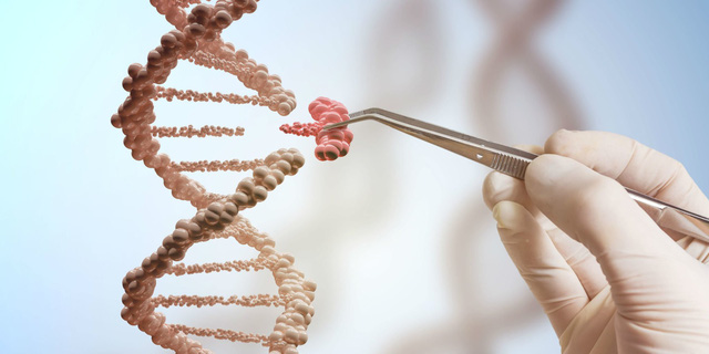 Vi phạm dữ liệu DNA còn nguy hiểm hơn so với rò rỉ thẻ tín dụng - Ảnh 2.