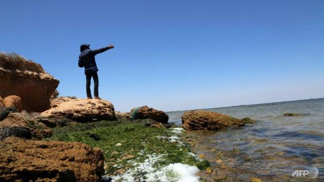 WWF: Địa Trung Hải sắp trở thành biển nhựa - Ảnh 1.