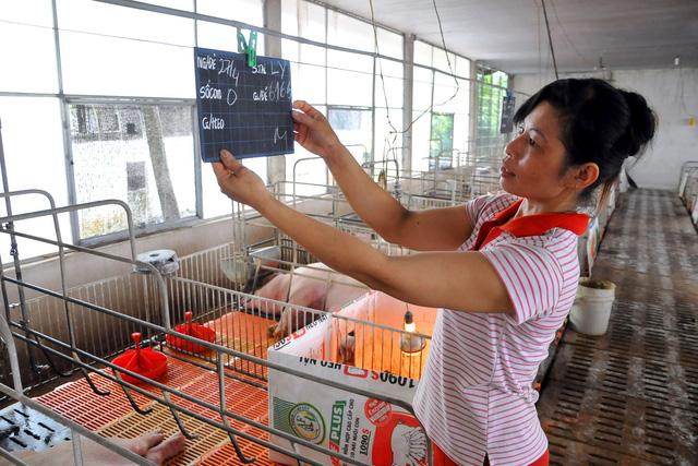 Đại chiến Mỹ - Trung: Thịt heo Mỹ sẽ tràn vào Việt Nam? - Ảnh 1.