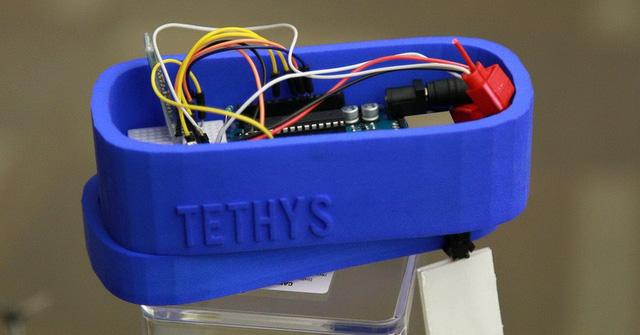 Nữ sinh 12 tuổi chế tạo máy phát hiện nước nhiễm chì - Ảnh 3.