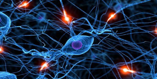 Tìm ra chìa khóa để máy tính suy nghĩ như não người - Ảnh 1.