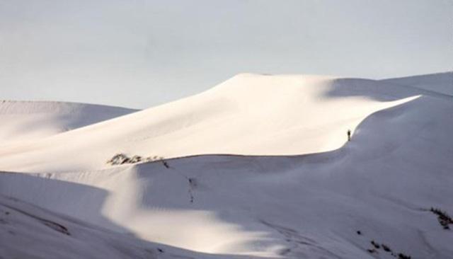 Cảnh tượng thiên nhiên hiếm có: Tuyết phủ kín sa mạc đỏ Sahara - Ảnh 1.