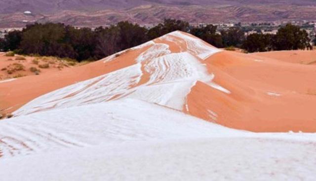 Cảnh tượng thiên nhiên hiếm có: Tuyết phủ kín sa mạc đỏ Sahara - Ảnh 3.