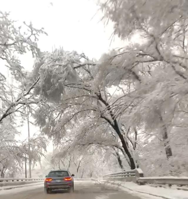 Bảy người thiệt mạng vì bão tuyết ở Mỹ - Ảnh 3.