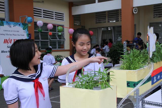 Học sinh tiểu học thiết kế vườn rau sạch trong trường - Ảnh 1.