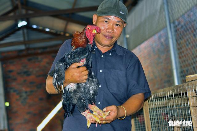 Gà Đông Tảo tặng tết giá 2,5-4 triệu đồng/ con - Ảnh 1.