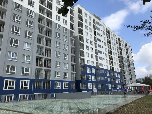 Người có thu nhập thấp ở Đà Nẵng đón tết ở căn hộ mới - Ảnh 3.