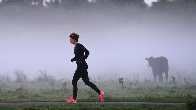 Tập thể dục giúp ngăn chặn hội chứng mất trí nhớ do Alzheimer - Ảnh 1.