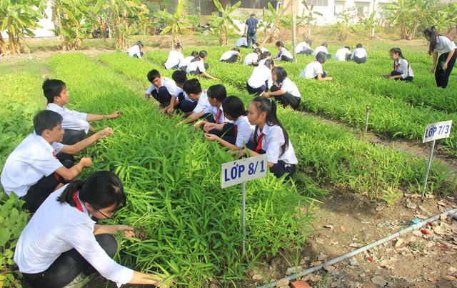 Câu lạc bộ nông gia trong trường cấp 2 - Ảnh 1.