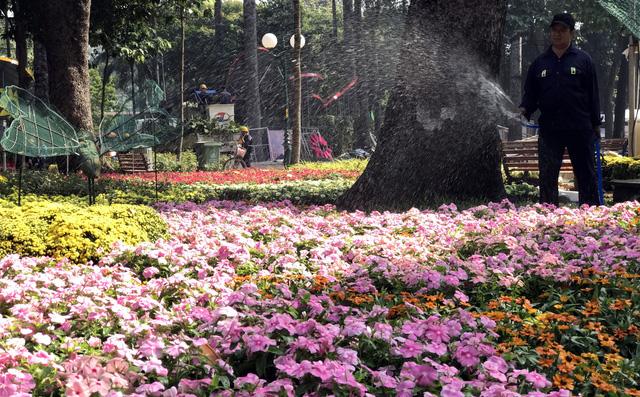 Nhiều tiểu cảnh hoa mới lạ tại Hội hoa xuân Kỷ Hợi - Ảnh 5.