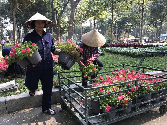 Nhiều tiểu cảnh hoa mới lạ tại Hội hoa xuân Kỷ Hợi - Ảnh 6.