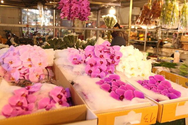 Đêm không ngủ những ngày giáp Tết ở chợ hoa Quảng An - Ảnh 10.