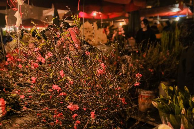 Đêm không ngủ những ngày giáp Tết ở chợ hoa Quảng An - Ảnh 8.