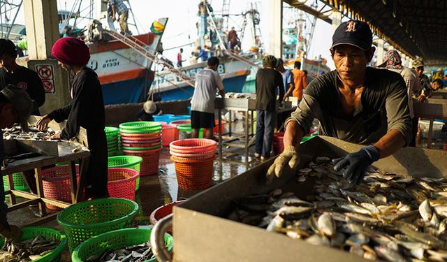 Thái Lan mừng vì thoát thẻ vàng về khai thác hải sản bất hợp pháp  - Ảnh 1.