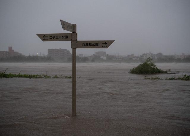 Siêu bão Hagibis xé toạc nhà cửa ở Nhật, đường sá chìm trong biển nước - Ảnh 3.