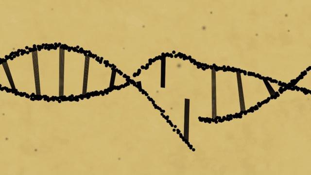Công nghệ mới có thể sửa 89% lỗi gen - Ảnh 1.