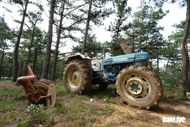 Mang máy cày xới tung khu vực cây thông cô đơn để chiếm đất - Ảnh 2.