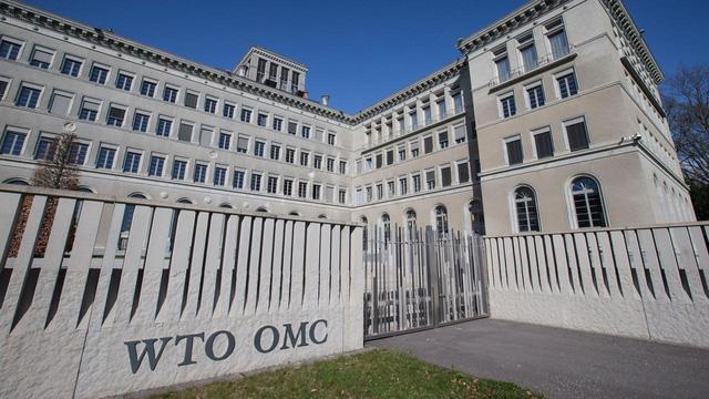 WTO cảnh báo xu hướng lực lượng lao động giảm mạnh tại nhiều nước - Ảnh 1.