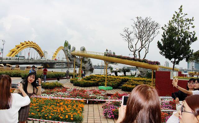 Khoác áo hoa cho đường hoa  Nguyễn Huệ - Ảnh 3.