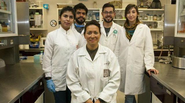 Tìm ra cách loại bỏ triệt để virus gây bệnh sùi mào gà - Ảnh 1.