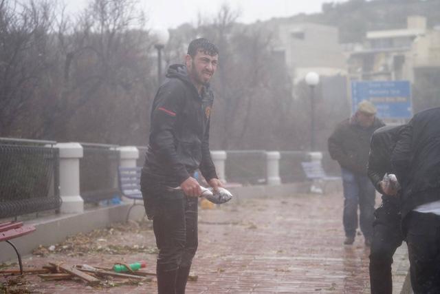 Bất ngờ có mưa cá do sóng lớn, dân Malta trúng mánh - Ảnh 1.