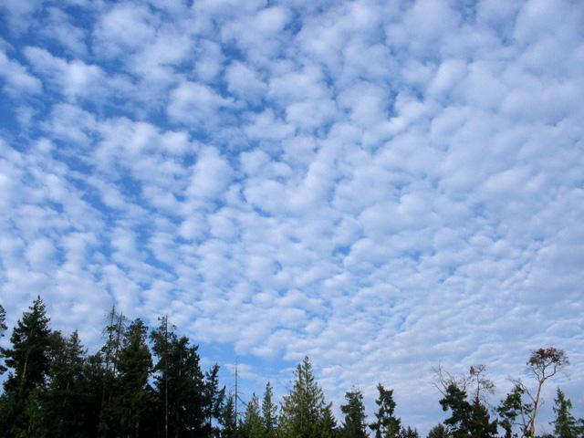 Biến đổi khí hậu sẽ khiến những đám mây biến mất mãi mãi - Ảnh 1.