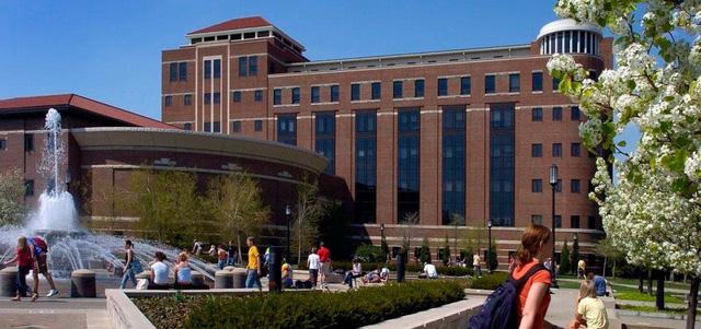 ĐH Mỹ cấm sinh viên giải trí trực tuyến bằng WiFi của trường - Ảnh 1.