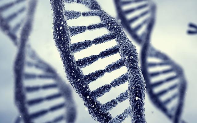 Phát hiện kiểu gen tác động đến hạnh phúc vợ chồng - Ảnh 1.