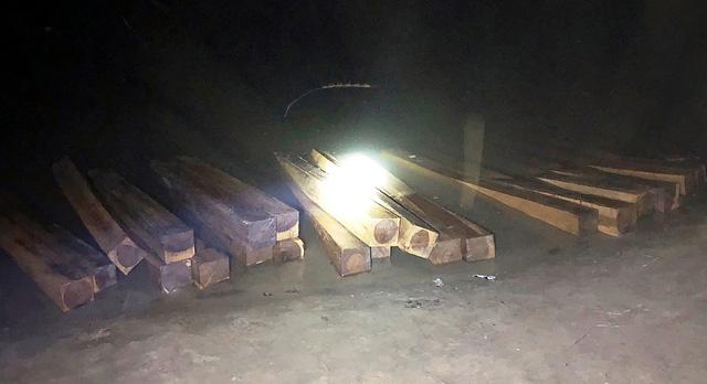 Thấy cảnh sát đường thủy, lâm tặc bỏ 50 phách gỗ lậu tẩu thoát - Ảnh 1.