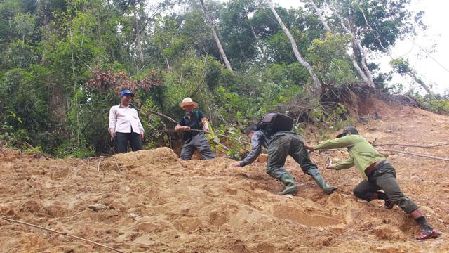 Tây Giang gìn giữ rừng xanh - Kỳ 1: Sáu năm một vụ phá rừng - Ảnh 1.