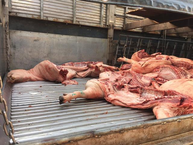 Tiêu hủy ngay hơn 1 tấn thịt heo nghi bị bệnh ở chợ Bình Điền - Ảnh 1.