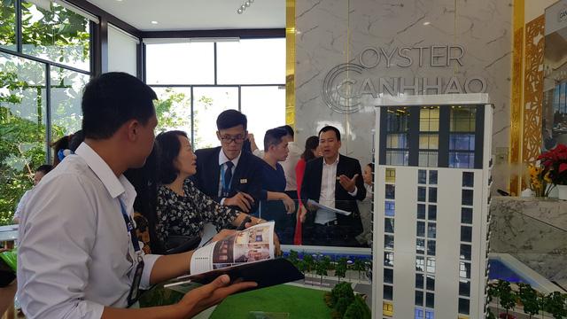 Khai trương nhà mẫu Oyster Gành Hào - Ảnh 1.
