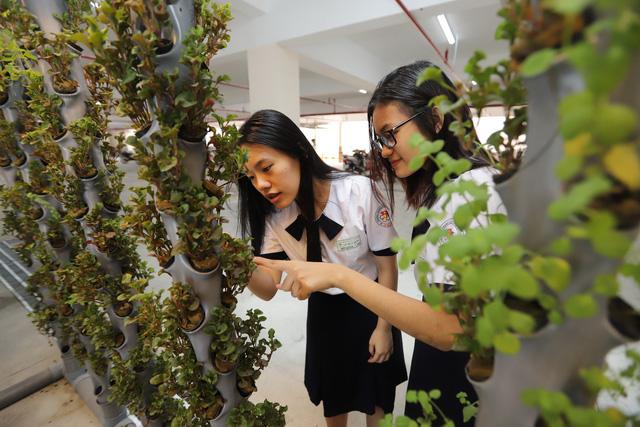 180 học sinh lớp 10 mời cha mẹ, thầy cô đầu tư kinh doanh trong trường - Ảnh 1.