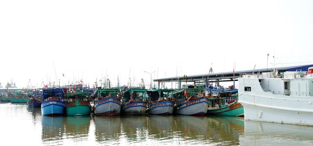 Kiên quyết không cho tàu cá không gắn định vị xuất biển - Ảnh 2.